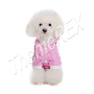 Dog raincoat-4