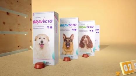 El mejor producto que puedes encontrar para eliminar pulgas y garrapatas