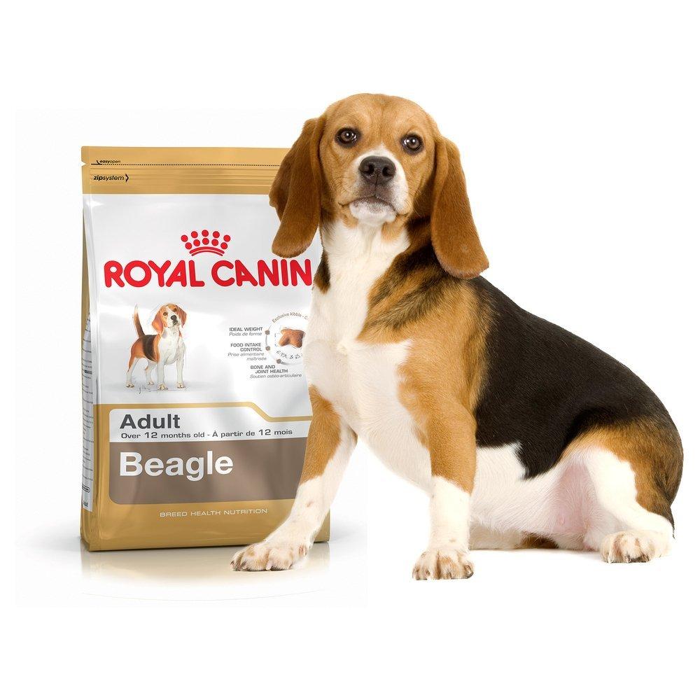 bhn-beagle-adult-3kg-_details